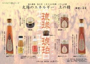 サトウキビ加工食品パンフレットの画像